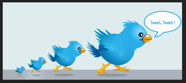 Top 5 Tips to Increase Twitter Followers